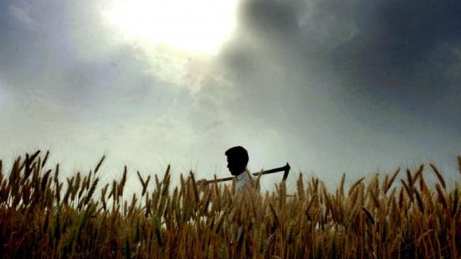 #Kisan आंदोलन: अब तक 6 किसानों की मौत, आज मंदसौर आ सकते हैं शिवराज , एमपी में बंद