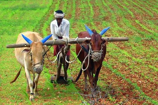 किसानों की डबल इनकम पर हो रहा है विचार