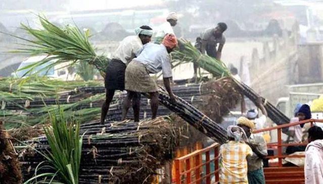 किसानों ने की FRP से ज्यादा रुपए की मांग, गन्ने की दर को लेकर बैठक बेनतीजा