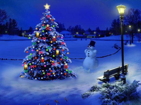 बुरी शक्तियां दूर करने भी लगाते थे क्रिसमस ट्री, यहां जानें रोचक FACTS...