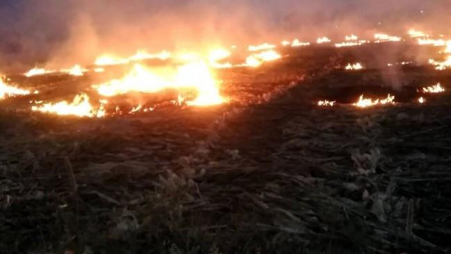खेतों में धधक रही गन्ने पतरोई की आग, हो रही उर्वरा शक्ति नष्ट