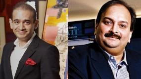 नीरव मोदी-मेहुल चौकसी किसी को अपनी संपत्ति नहीं बेच सकते : NCLT