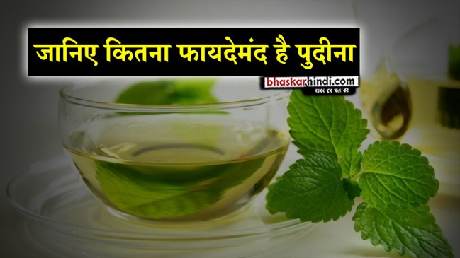 Peppermint protects from Sunstroke in summer, know more