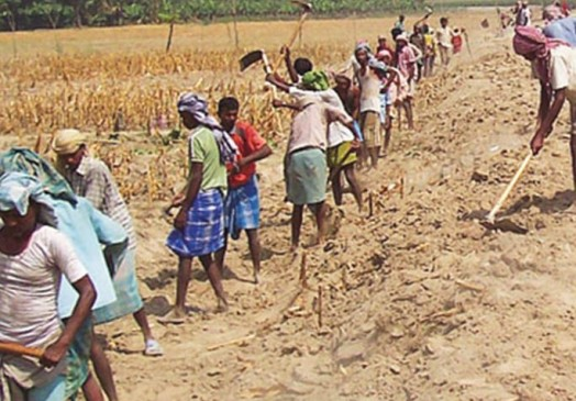 लाखों की जमीन, मगर खेती में नुकसान इतना हुआ कि मनरेगा मजदूरी करने लगे किसान