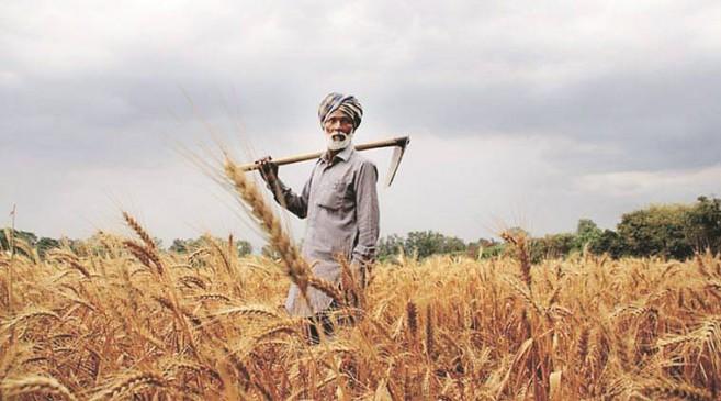 प्रभावित किसानों को तुरंत नुकसान भरपाई का बीमा कंपनियों को निर्देश