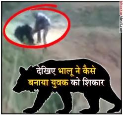 ओडिशा: भालू संग सेल्फी लेने के चक्कर में गई युवक की जान, देखें वीडियो