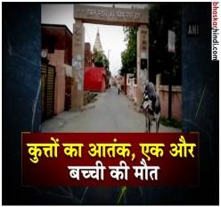 सीतापुर के बाद अब गाजियाबाद में कुत्ते के हमले से मासूम की मौत