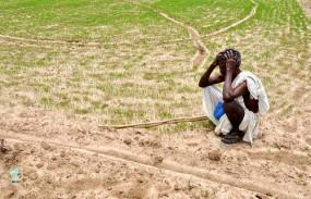 अधिकारियों की हड़ताल से किसान बेहाल, ना बीज मिला, ना हुआ मिट्टी परीक्षण