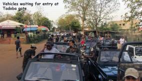 ताड़ोबा ऑनलाइन बुकिंग में हुई गड़बड़ी, अवैध रूप से वन क्षेत्र में वाहनों को एंट्री देने का आरोप
