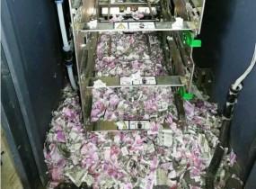 असम: SBI के ATM में चूहों का हमला, कुतर डाले 12 लाख रुपए के नोट