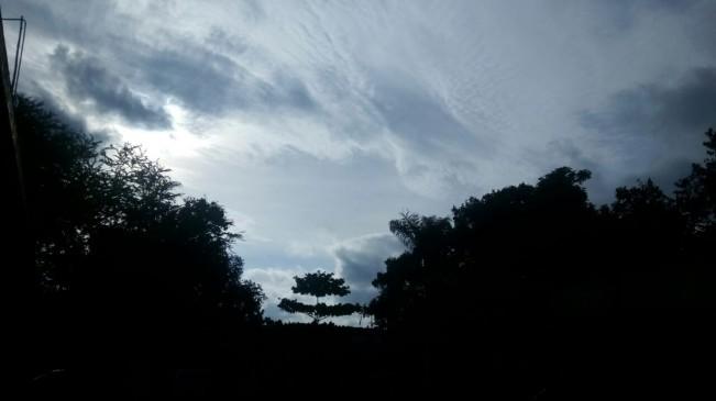 सुबह हल्की बूंदाबांदी के बाद संतरा नगरी में दोपहर खिली सुनहरी धूप