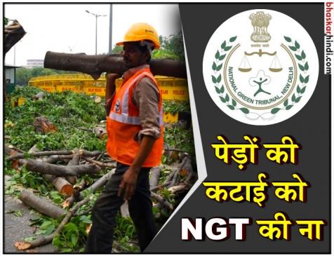 दक्षिण दिल्ली में 16,500 पेड़ काटे जाने पर NGT ने लगाई रोक