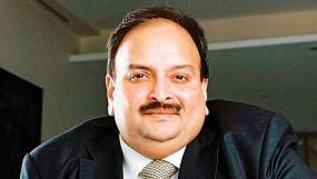 CBI ने विदेश मंत्रालय से कहा- बिना रेड कॉर्नर नोटिस के भी हो सकता है मेहुल चोकसी का प्रत्यर्पण