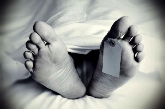 जानलेवा है चिगर माइट्स जीवाणु: स्क्रब टायफस से छात्र की संदिग्ध मौत, मरीजों की संख्या 24 पर पहुंची