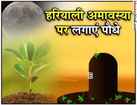 हरियाली अमावस्या: महत्व और कौन-कौन से पौधे करें रोपित