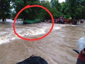विदर्भ में जोरदार बारिश, गड़चिरोली के 100 गांव प्रभावित, पेड़ से टकरा अटकी बस 25 जानें बचीं