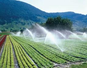 15 अगस्त से शुरू होगी एक किसान-एक ट्रांसफार्मर योजना, ढाई लाख किसानों को फायदा