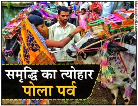 बैलों की पूजा का दिन तान्हा पोला, महाराष्ट्र में मनेगा धूम-धाम से