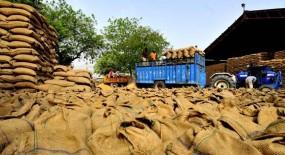 भंडारण में नागपुर फिसड्डी, 49 गोदामों में मात्र 25,329 मीट्रिक टन ही अनाज