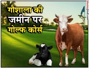 अफसरों को गोल्फ खिलाने के लिए गौ-शाला की जमीन पर गोल्फ कोर्स बनाएगी शिवराज सरकार