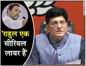 राफेल: बीजेपी का पलटवार, केन्द्रीय मंत्री ने गिनाए राहुल गांधी के आठ झूठ