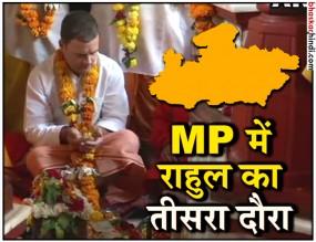 राहुल ने दतिया, डबरा और ग्वालियर में की चुनावी रैलियां, उमड़ा जनसैलाब