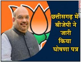 अमित शाह ने जारी किया BJP का संकल्प पत्र, किसानों-युवाओं पर फोकस