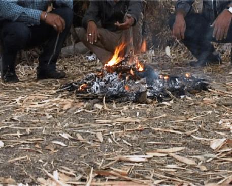 विदर्भ सहित पूरे  महाराष्ट्र में ठंड से ठिठुरन, नागपुर सबसे ठंडा, कंपाने वाली ठंड की चपेट में उत्तर भारत