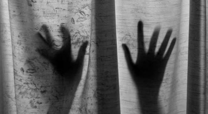 नौ माह की गर्भवती महिला सेपड़ोसी नेकिया रेप, आरोपी गिरफ्तार