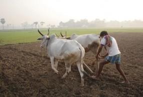 कृषि ऋण माफी योजना : शहडोल में 5 हजार किसानों के नाम सूची से गायब