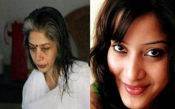 इंद्राणी और पीटर राहुल-शीना के संबंध से नहीं थे खुश, गवाह का कोर्ट में दावा
