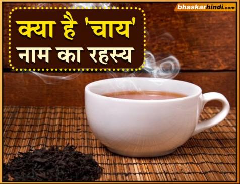 चाय को विश्व भर में सिर्फ दो नामों से ही क्यों जाना जाता है?