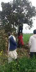 वैलेंटाइन डे पर प्रेमी युगल ने फांसी लगाकर आत्महत्या की, पेड़ पर लटके मिले शव