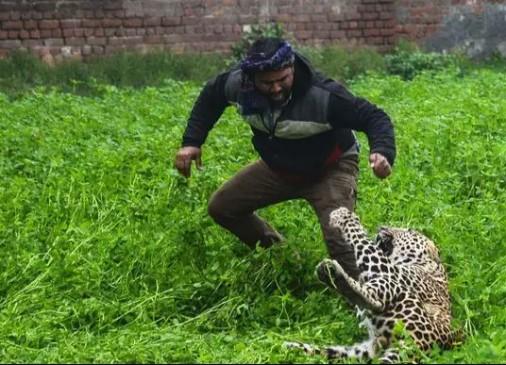 रहवासी इलाके में घुसा तेंदुआ, कई लोगों को किया घायल