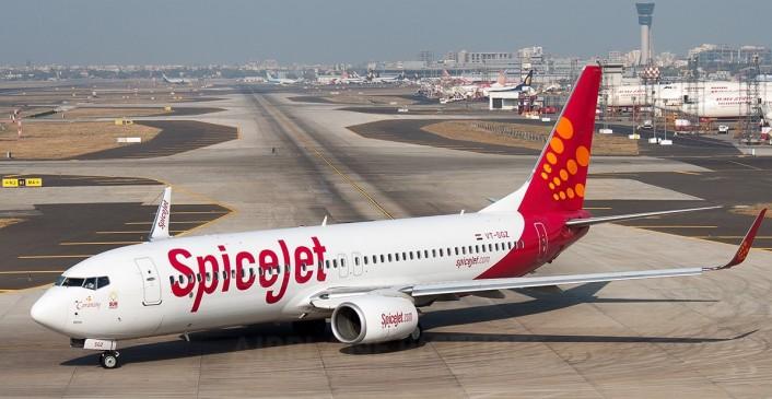 स्पाइस जेट का धमाकेदार ऑफर, 899 रुपए में बुक कराएं एयर टिकट
