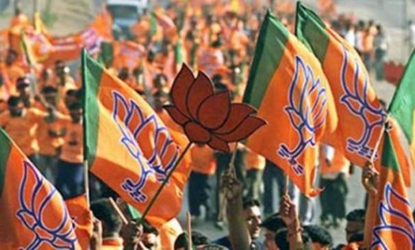 लोकसभा चुनाव के लिए भाजपा ने बनाई 22 समितियां, उम्मीदवारों के नाम पर 16 मार्च को लगेगी मुहर