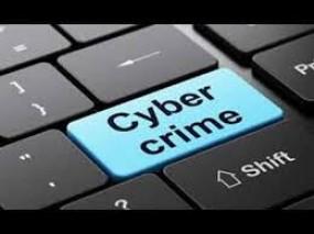नागपुर में बढ़ा साइबर क्राइम, डुप्लीकेट वेबसाइट बनाकर ठगी