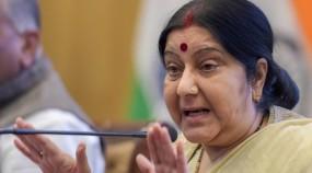 तीसरी सर्जिकल स्ट्राइक देश का मतदाता करेगा - सुषमा स्वराज