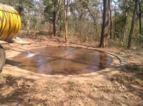 भंडारा वनपरिक्षेत्र में 14 जलकुंभ से बुझ रही वन्यजीवों की प्यास