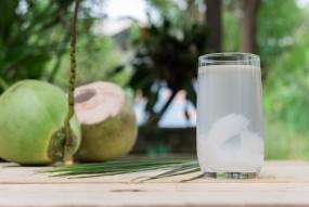 Skin Care: ब्यूटी प्रोडक्ट्स नहीं, नारियल पानी से करें चेहरे की प्राब्लम्स दूर