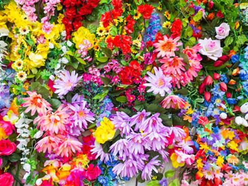 गर्मी के मौसम में घर पर लगाएं ये खूबसूरत और खुशबूदार फूल