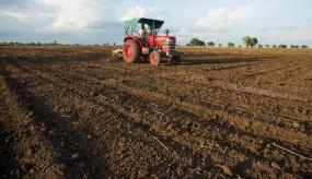 कृषि विभाग ने खरीफ सीजन के लिए उपलब्ध करवाए गए 17 लाख क्विंटल बीज