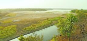 नागपुर को पानी देने वाले डैम सूखे, समय पर बारिश नहीं हुई तो हो सकती भयावह स्थिति