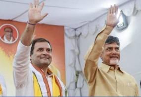 राहुल और शरद पवार से फिर मिले चंद्रबाबू, सोनिया से भी करेंगे बात