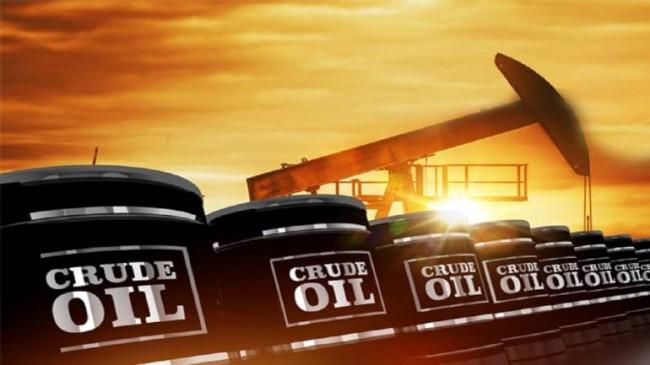 सऊदी अरब के बयान से पेट्रोल और डीजल के दाम में राहत की उम्मीद