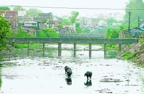 नागपुर की नाग नदी-13.95 किमी , पीली नदी-17.23 किमी व पोहरा नदी-42.52 किमी साफ