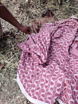 आंगन में सोयी थी वृद्ध महिला, उठा ले गया तेंदुआ, दूर नर्सरी में मिला शव