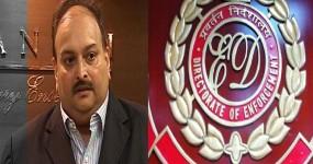 मेहुल चोकसी की कोई बात न सुने अदालत -ईडी ने हाईकोर्ट में की मांग
