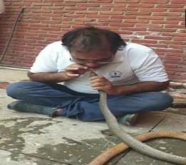 MP: इंदौर में IT अधिकारी ने मुंह से पानी पिलाकर बचाई सांप की जान