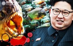 किम जोंग ने अपने ही जनरल को खूंखार पिरान्हा मछलियों के टैंक में फिंकवाया